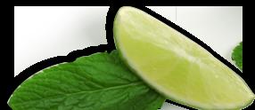 leaf-lemon